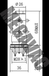 MGV13